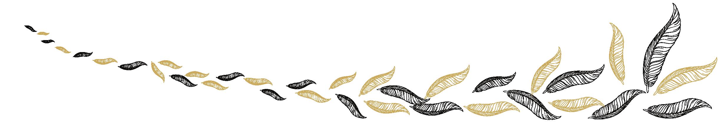 Chambre plume bannière