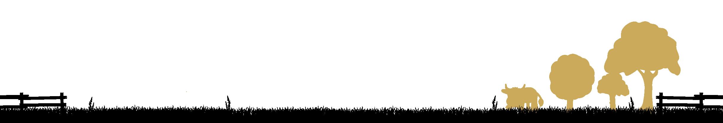 Chambre vache bannière