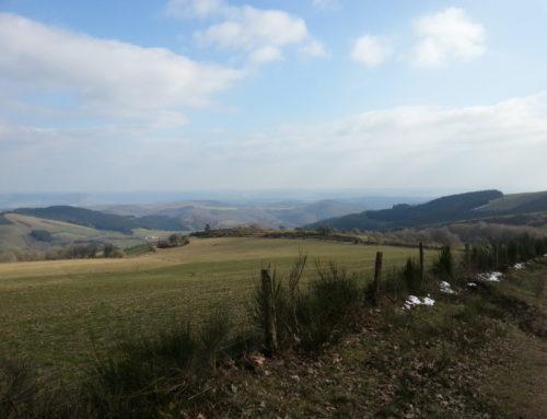 Randonnée sur le Puech Monseigne avec une vue 360°